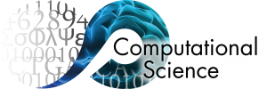 Computational Science at the University of Amsterdam