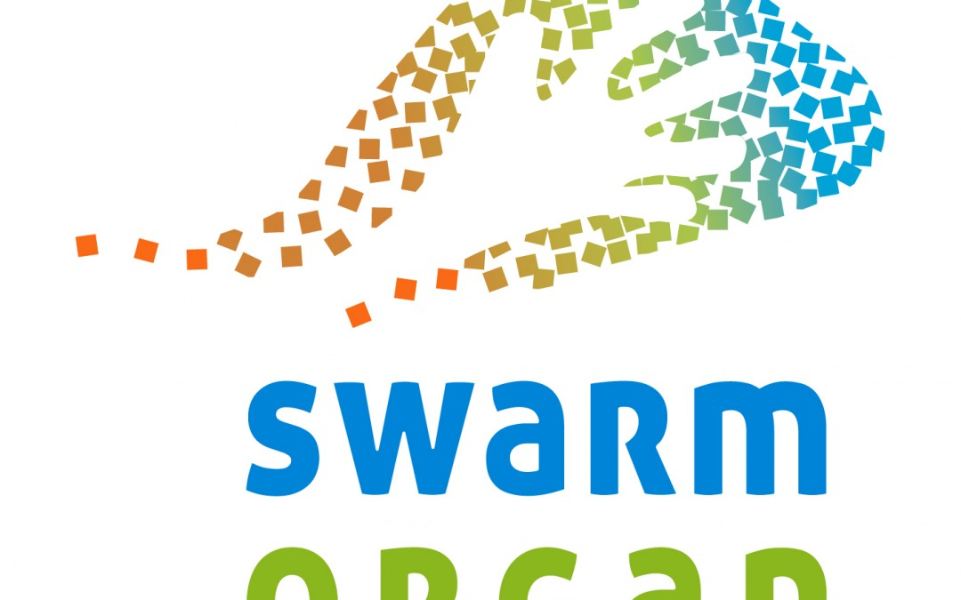 Digital agenda for Europe: What if we could build new self-healing materials? The Swarm-Organ FET Proactive project