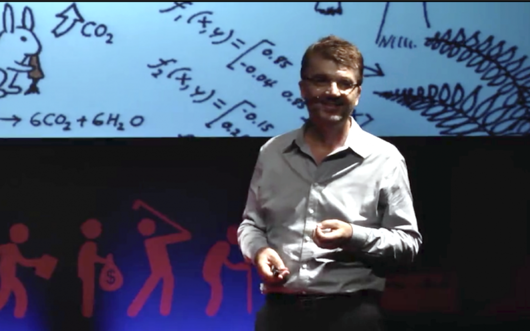 The Fire of Life – TEDx talk by Peter Sloot